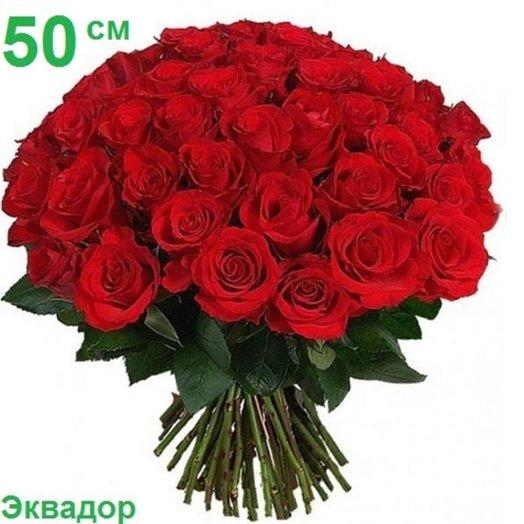 51 эквадорская роза 50 см: букеты цветов на заказ Flowwow