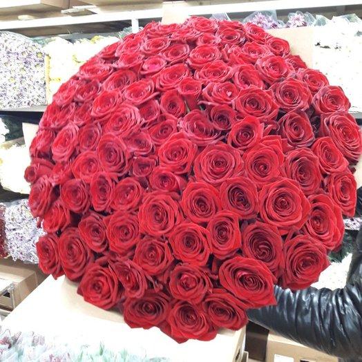 101 высокая эквадорская роза