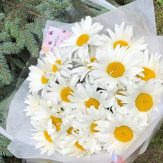 19 ромашек: букеты цветов на заказ Flowwow