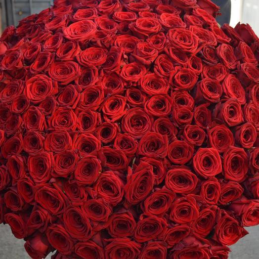 Огромный букет красной розы: букеты цветов на заказ Flowwow