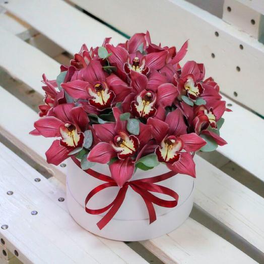 Шляпная коробка орхидей: букеты цветов на заказ Flowwow