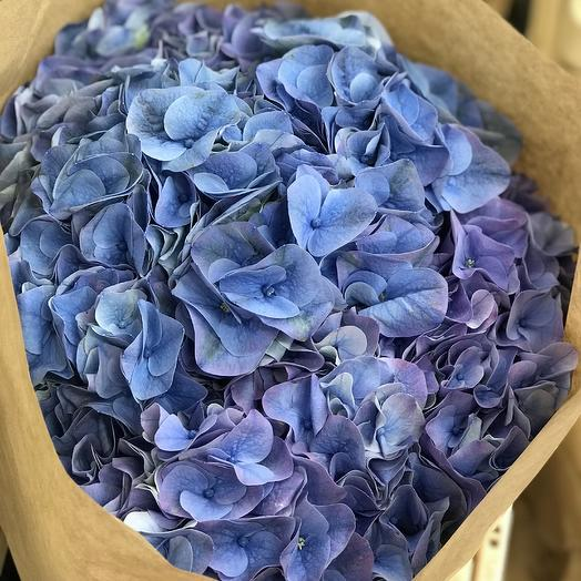 Гортензия в Крафте: букеты цветов на заказ Flowwow