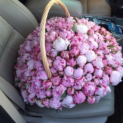 Шикарная корзина 201 пион💮: букеты цветов на заказ Flowwow