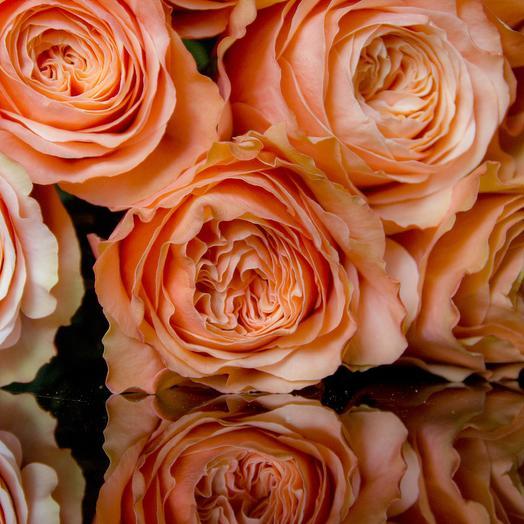 Роза Kahala 17 шт: букеты цветов на заказ Flowwow