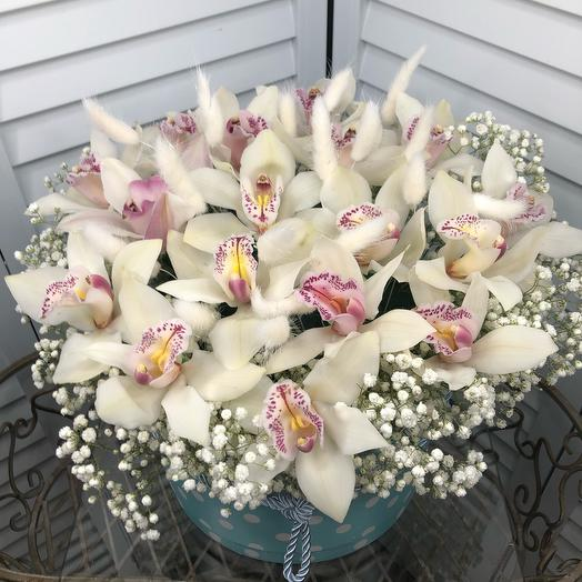 Коробка из орхидеи