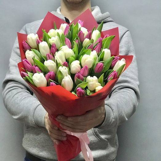 Букет из 51 бело-розового тюльпана