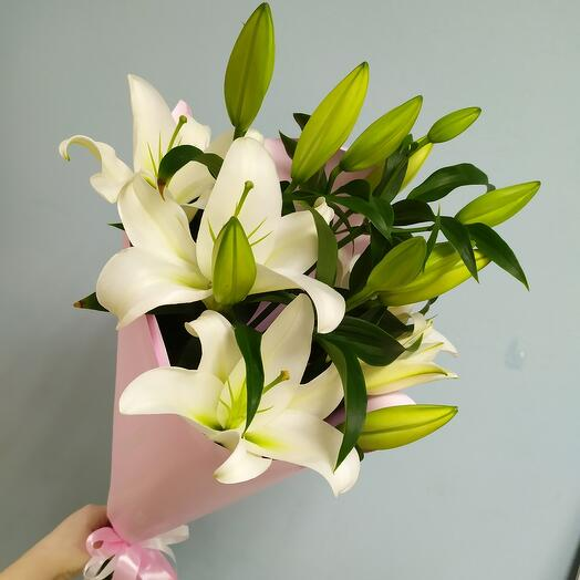 Лилия белая ( 3 шт )