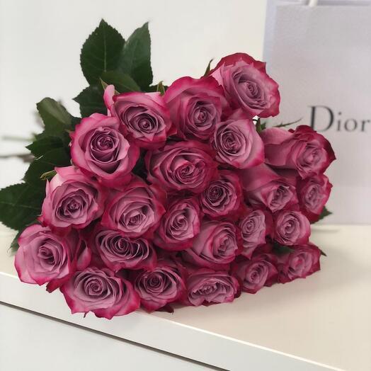 25 сиреневых роз сорта DEEP PURPLE