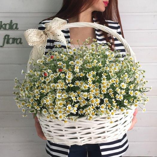 Ромашки в корзине: букеты цветов на заказ Flowwow