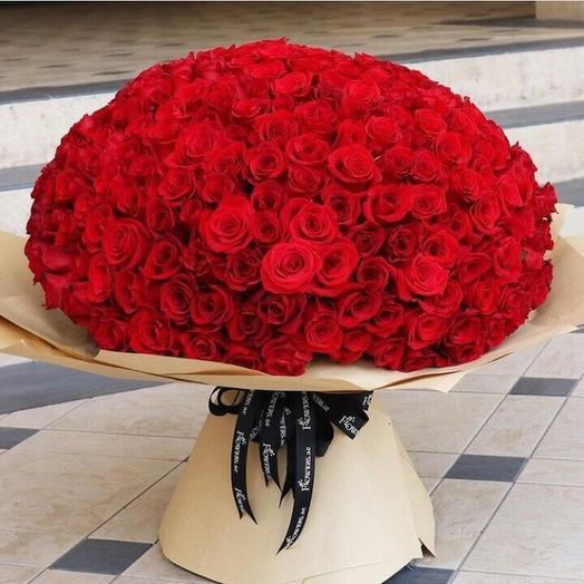 201 роза в дизайнерской упаковке: букеты цветов на заказ Flowwow