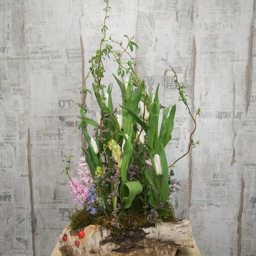 Весна, весна, как воздух чист: букеты цветов на заказ Flowwow