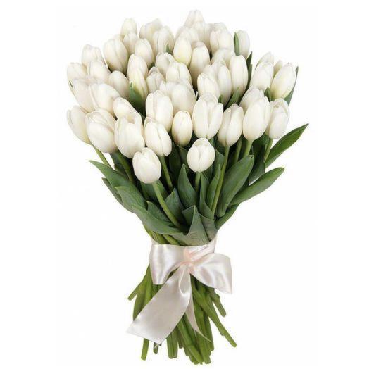 51 белоснежный Тюльпан: букеты цветов на заказ Flowwow