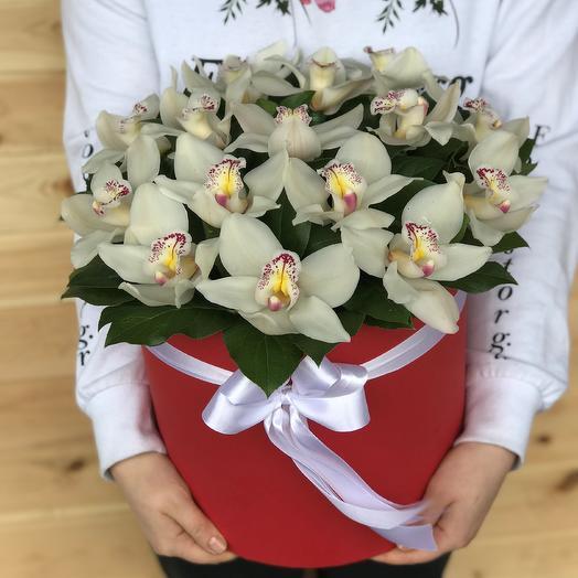 Коробки с цветами. Орхидея. Цимбидиум. N466: букеты цветов на заказ Flowwow