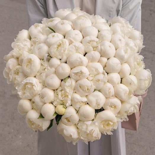 """Букет """"75 Белых Пионов"""": букеты цветов на заказ Flowwow"""