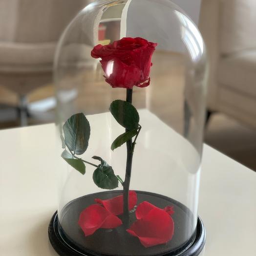 Роза в колбе Premium 32 см (красная)
