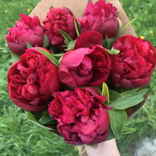 Пионы Крым: букеты цветов на заказ Flowwow
