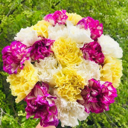 Букет гвоздик: букеты цветов на заказ Flowwow