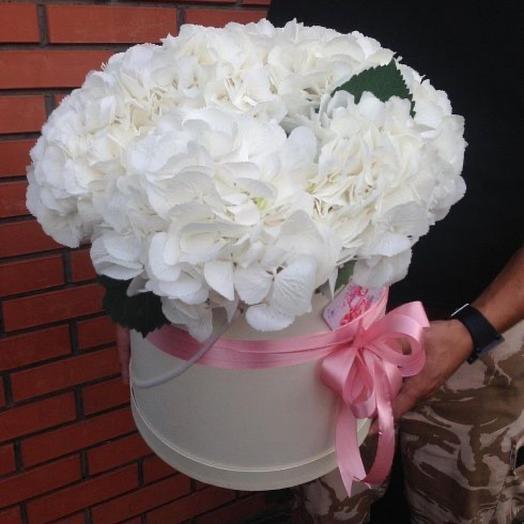 Цветы в коробке Белоснежка