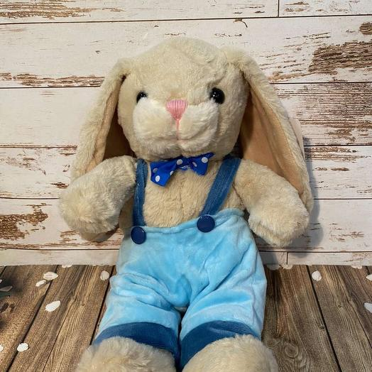 Bunny in pants