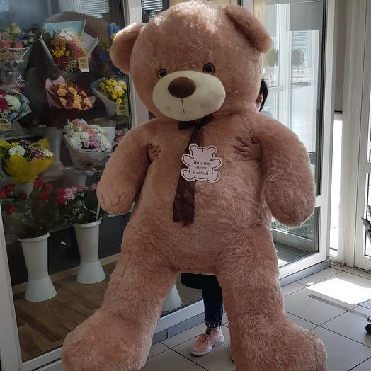 Медведь 🦋