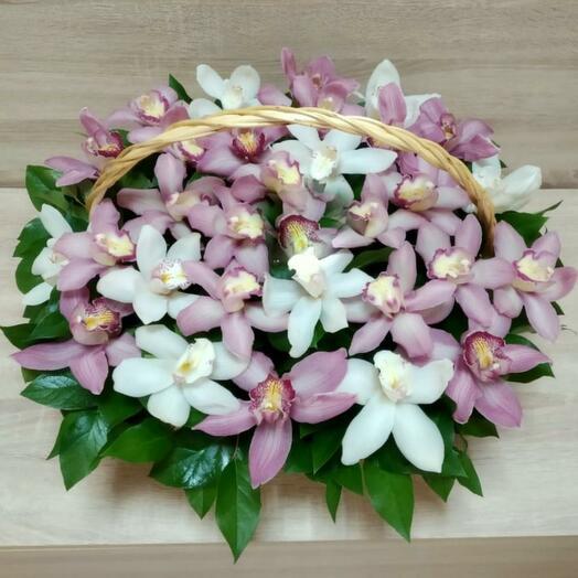 Корзина с орхидеей