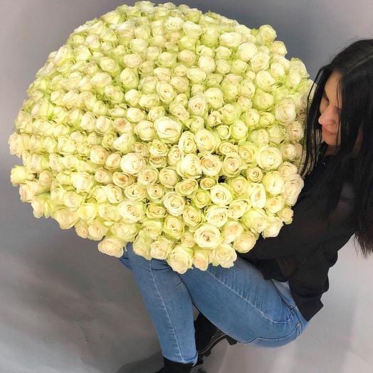 Твой: букеты цветов на заказ Flowwow