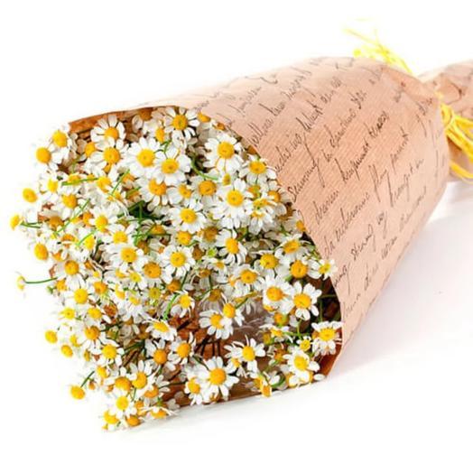 Букет из 11 ромашек: букеты цветов на заказ Flowwow