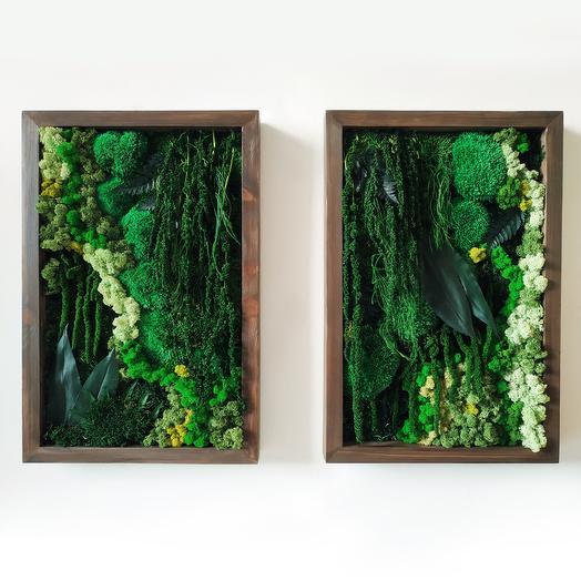 Диптих из стабилизированных растений и мха: букеты цветов на заказ Flowwow