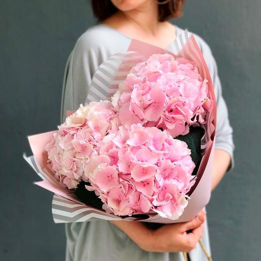 Розовые гортензии 3