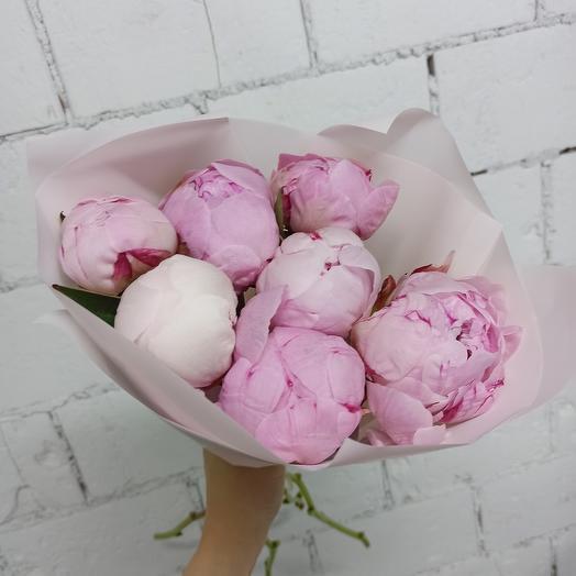 7 Крупных пионов Сара Бернар в Нежной упаковке: букеты цветов на заказ Flowwow