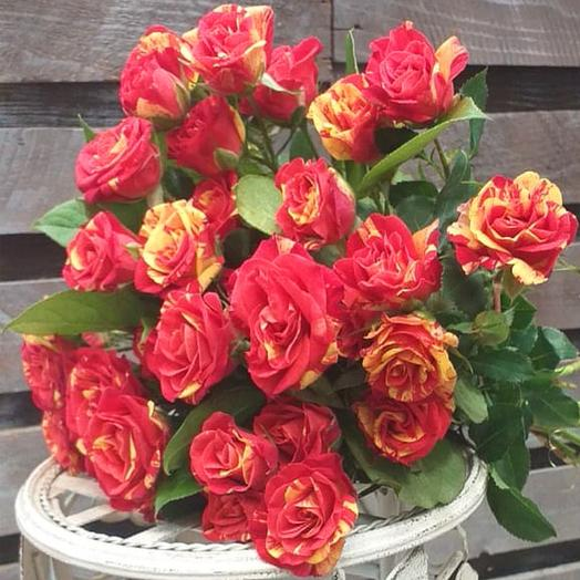 Кустовые розы Фай Флэш поштучно