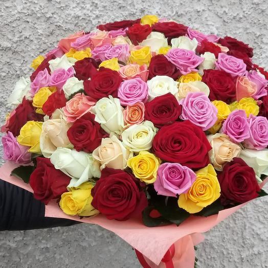 101 rose mix