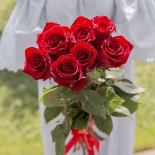 7 Красных Эквадорских роз