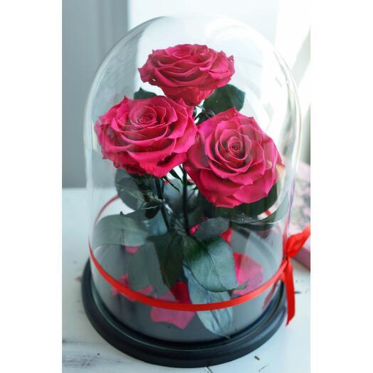 Роза в колбе Трио Премиум Фуксия 32*22*7см