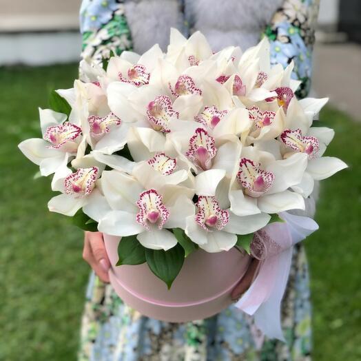 Белая орхидея в коробке
