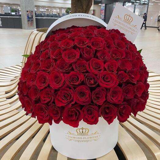 Букет 69 / 101 роза (ЭКВАДОР)