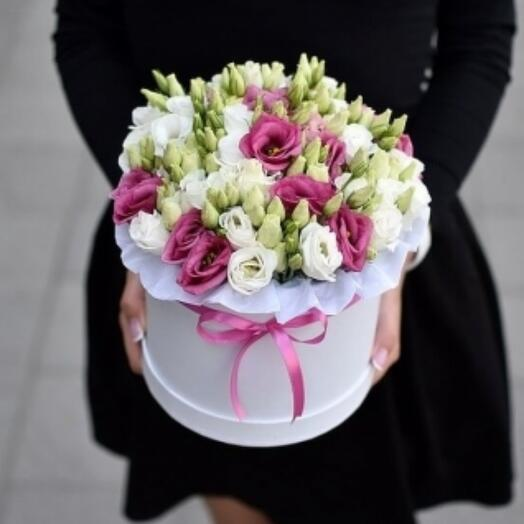 Eustoma in a box