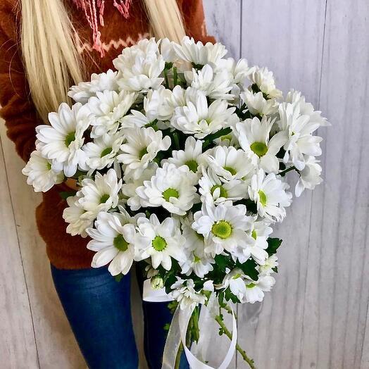 Букет из ромашковой хризантемы V003