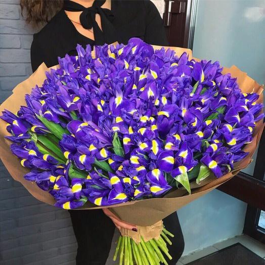 99 синих ирисов: букеты цветов на заказ Flowwow