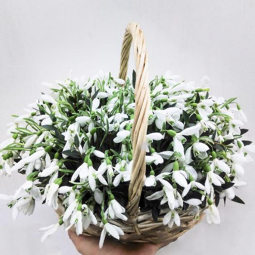 Корзина подснежников: букеты цветов на заказ Flowwow