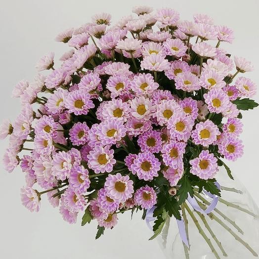 Розовые ромашки 13: букеты цветов на заказ Flowwow