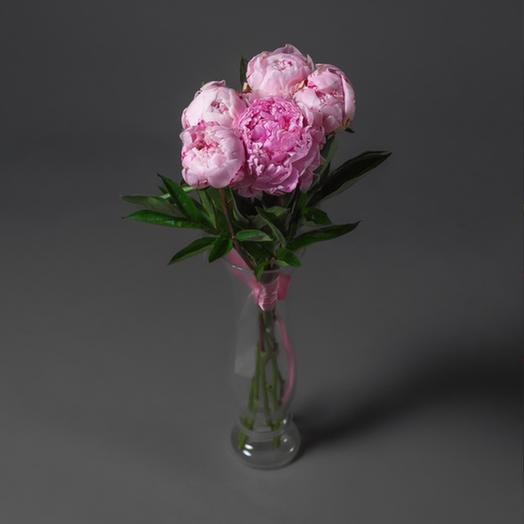 "Букет ""5 Пионов Сара Бернар"": букеты цветов на заказ Flowwow"