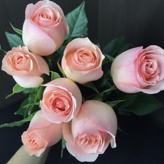7 Голландский Роз 70 см: букеты цветов на заказ Flowwow