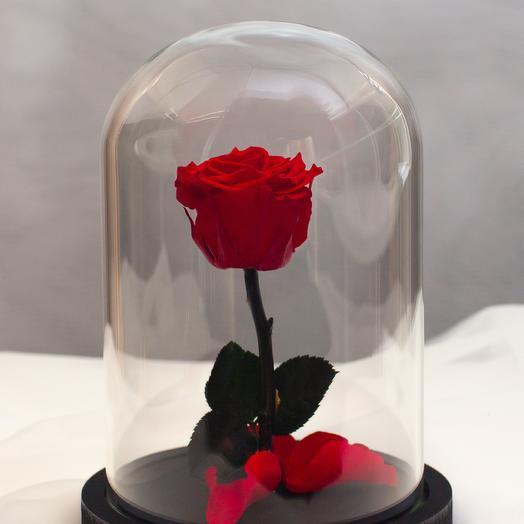 Роза в колбе RozaRose Мини Красная