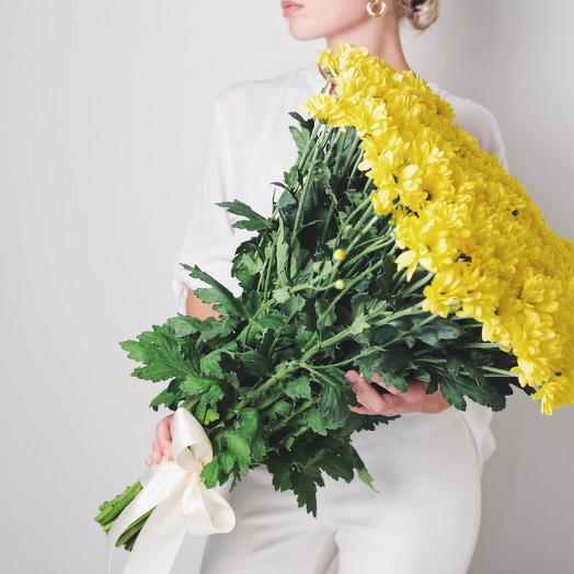 25 yellow chrysanthemums in the tape