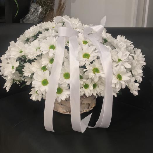 Корзина с хризантемой 😍