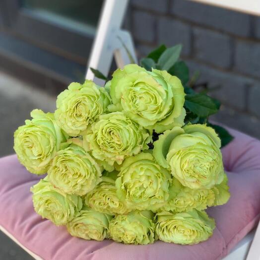 Монобукет 15 Зелёных роз 60см