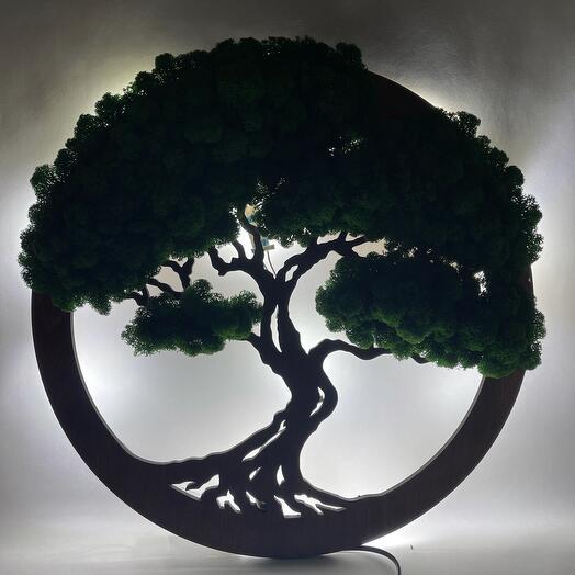 Дерево жизни с подсветкой