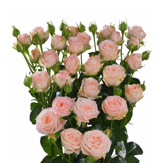 Роза Бомбастик: букеты цветов на заказ Flowwow