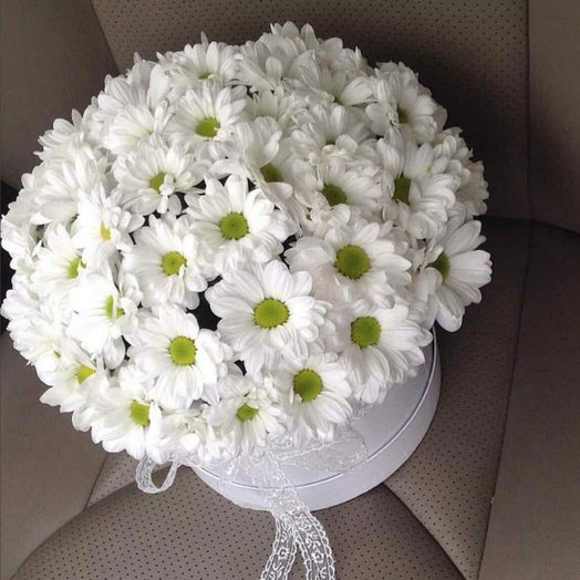 Шикарные хризантемы: букеты цветов на заказ Flowwow